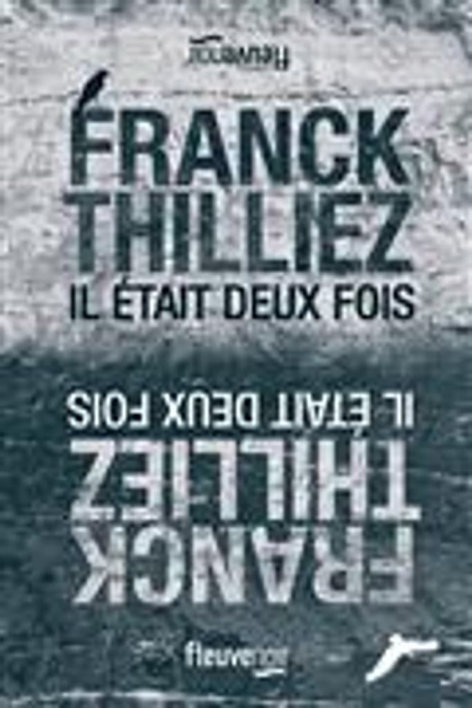 Il était deux fois   Thilliez, Franck. Auteur