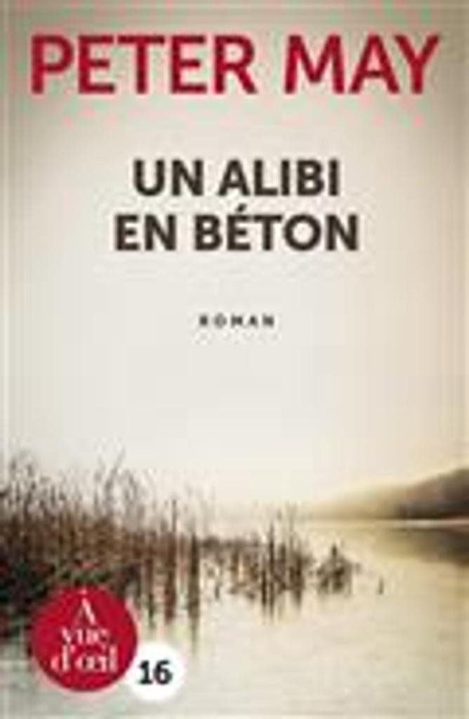 Un alibi en béton = Cast Iron   May, Peter. Auteur